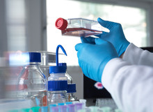Pharmaceutical Research Into I...