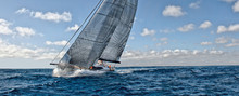 Sailing Yacht Regatta. Yachting. Sailing Race
