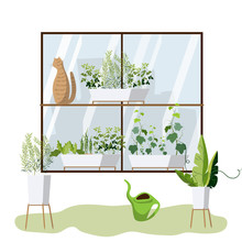 Home Gardening: Window Greenho...