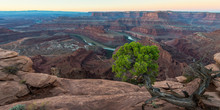 Sunrise In Dead Horse Point St...
