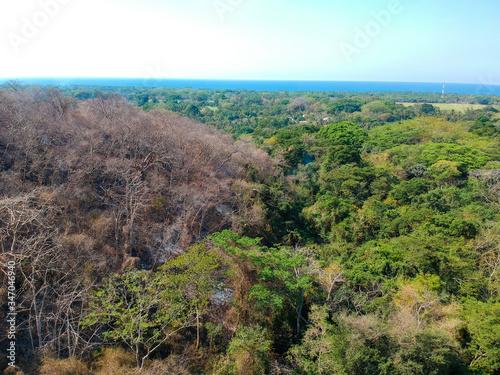 Fotomural Incendio en Parque Walter  Thilo Deininger en La Libertad El Salvador mitad en i