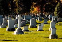 Old Cemetery In United States In Autumn