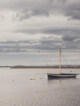 The Galway Hooker Is A Traditional Fishing And Cargo Boat Used In Galway Bay Off The West Coast Of Ireland. The Vessle Is Ancored In River Corrib.