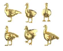Set Of Polygonal Ducks