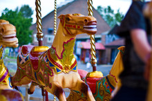 Carousel Horse In Amusement Park