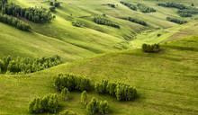 Full Frame Shot Of Green Fields