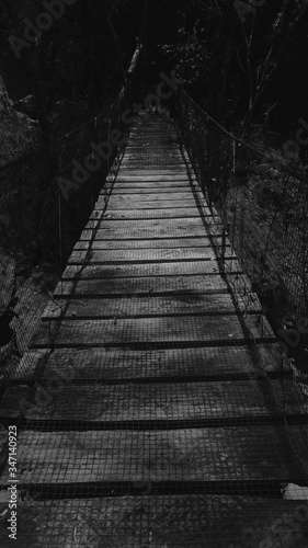 Fotografia Narrow Footbridge In Forest