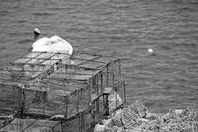 High Angle View Of Crab Pots At Fishing Industry