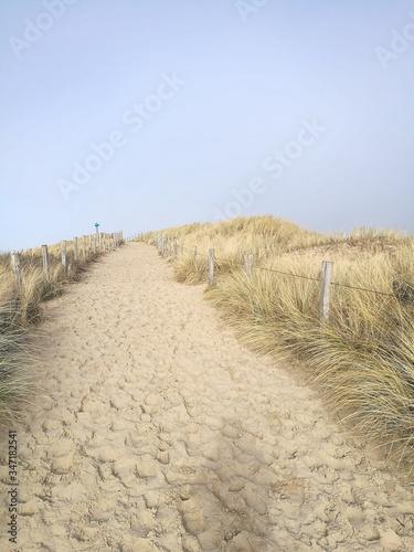 Fototapeta Scenic View Of Beach Against Clear Sky obraz na płótnie