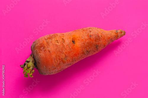 Ugly foods Slika na platnu