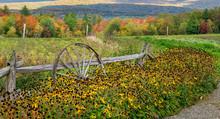 Autumn Garden At Von Trapp Family Resort In Stowe Vermont