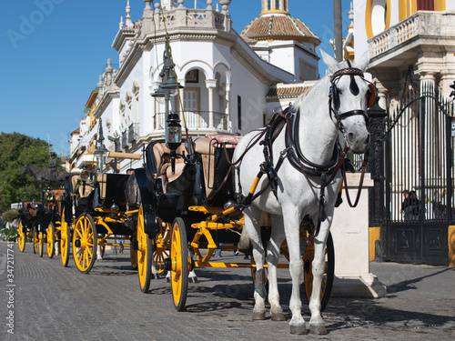 Fototapety, obrazy: Seville, Spain, November 16, 2019: Horse carriage in front of th