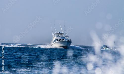Fotografie, Obraz motor yacht on the sea
