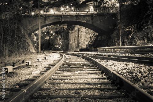 Obraz na płótnie Railroad Tracks Leading Towards Bridge