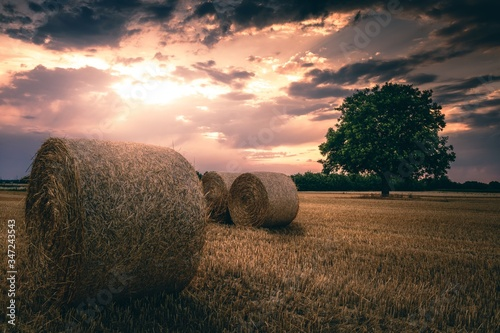 Canvastavla Hay Bales On Field Against Sky At Sunset