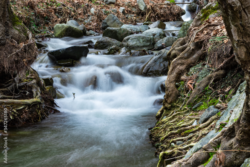 Fototapeta Beautiful flowing river in the forest.