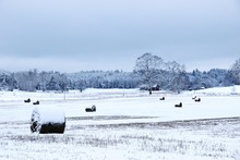 Hay Bales On Snow Covered Field