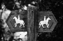 Wooden Horseback Riding Sign In Forest