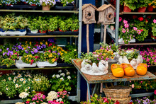 Fair Flowers And Traditional Handmade Products In Netherlands. Amsterdam Volendam. Yellow Wooden Boots And Flowerpot With Bouquet Pot And Basket.