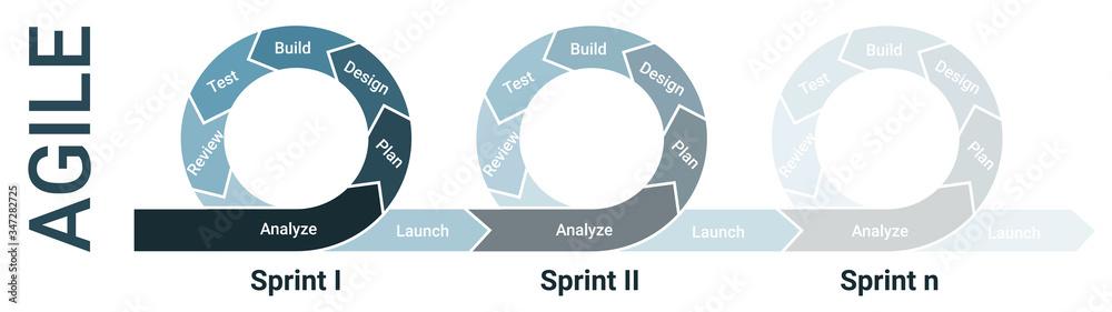 Fototapeta Agile lifecycle development, agile methodology, agile process diagram, software developers sprints infographic