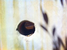 Full Frame Shot Of Wall With Hole