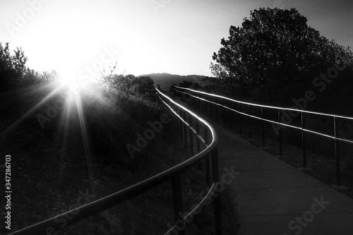 Fotografia Narrow Footbridge Along Landscape