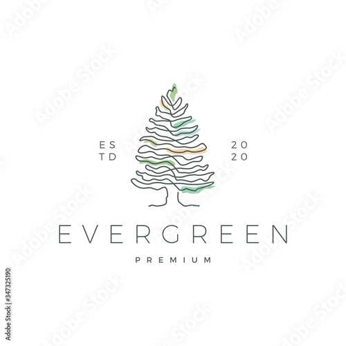 Fotografiet pine evergreen fir hemlock spruce conifer cedar coniferous cypress larch pinus t