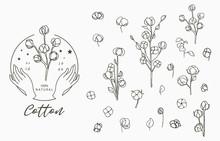 Black Cotton Logo Collection W...