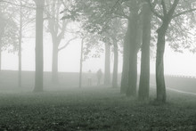 Man And Woman At Park During Foggy Weather
