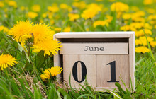 June 01, Calendar Organizer, T...