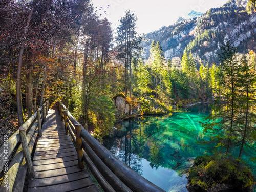 Carta da parati Footbridge Over Blausee By Trees