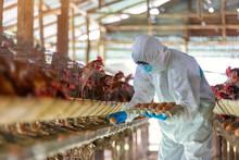 Asian Farmer Wear PPE Suit Pro...