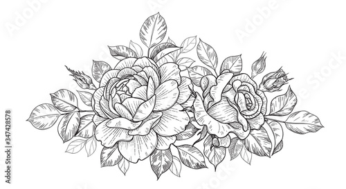 Valokuvatapetti Hand Drawn Floral Bunch with Roses, Buds and Leaves