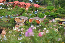 Resort On Phu Thap Berk