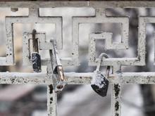 Close-up Of Frozen Padlocks Hanging On Gate