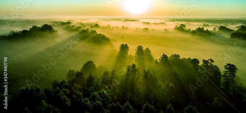 Fototapeta wschód słońca nad lasem we mgle obraz