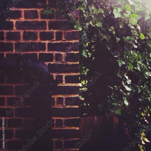 Fényképezés Drainpipe On House Wall