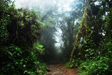 """Costa Rica, """"Just Before The M..."""
