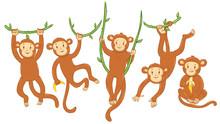 Set Of Cute Monkeys Isolated O...