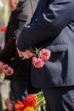 A Bouquet Of Red Carnations In...