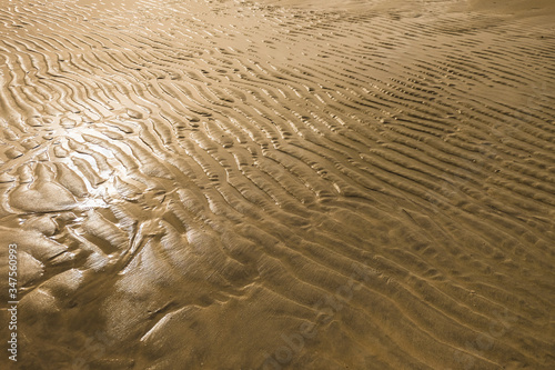Texture of wet sand Wallpaper Mural