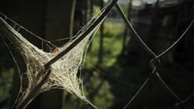 Close-up Of Spider Web On Chai...