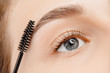 Master brushes eyebrows to woman in beauty salon. Correction of brow hair