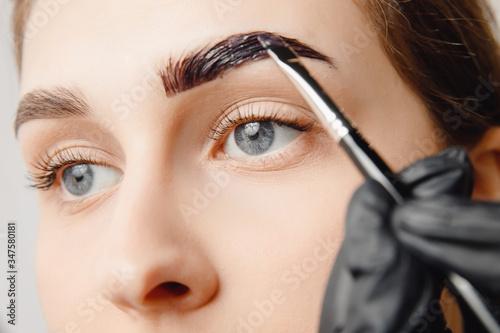 Fototapeta Master brush dye henna eyebrows woman in beauty salon. Correction of brow hair obraz