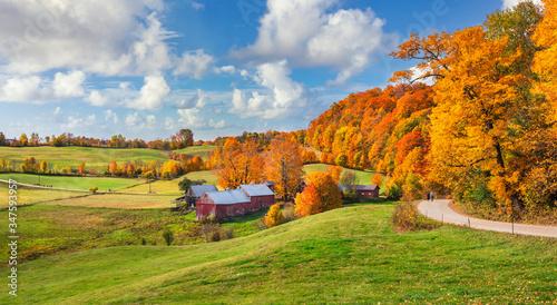 Fototapeta Brilliant golden fall colors in Vermont Countryside farm during Autumn near Woodstock obraz