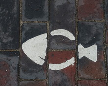 Fish Painted On Pavement
