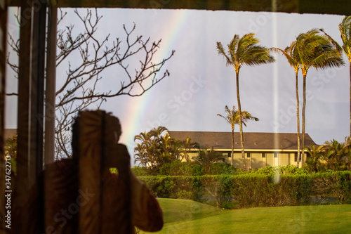 The reflection of a rainbow with palm trees and a silhouette of a person taking a picture.  - 347622713