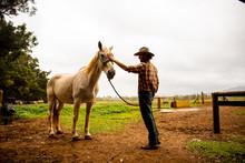 A Young Man Wearing A Cowboy H...