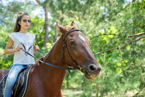 Teenager girl riding a brown horse, horseback riding for people in the park Wallpaper Mural