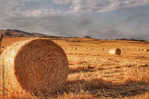 Fotografiet Hay Bales On Field Against Sky